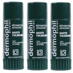 Dermophil Indien Lèvres 2 Sticks + 1 Offert