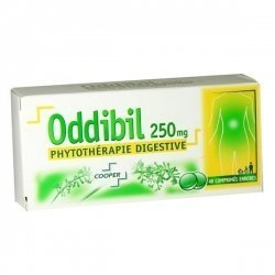 Oddibil Digestion 250 mg 40 Comprimés enrobés pas cher, discount